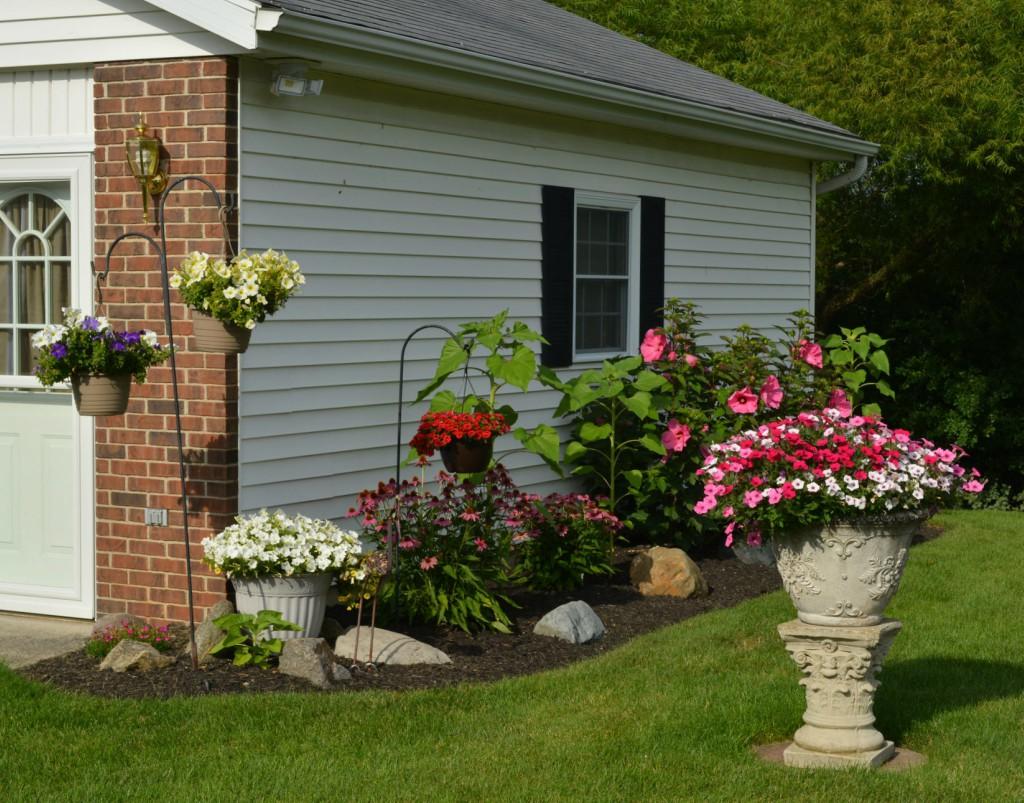 Garden, July 21: LongView